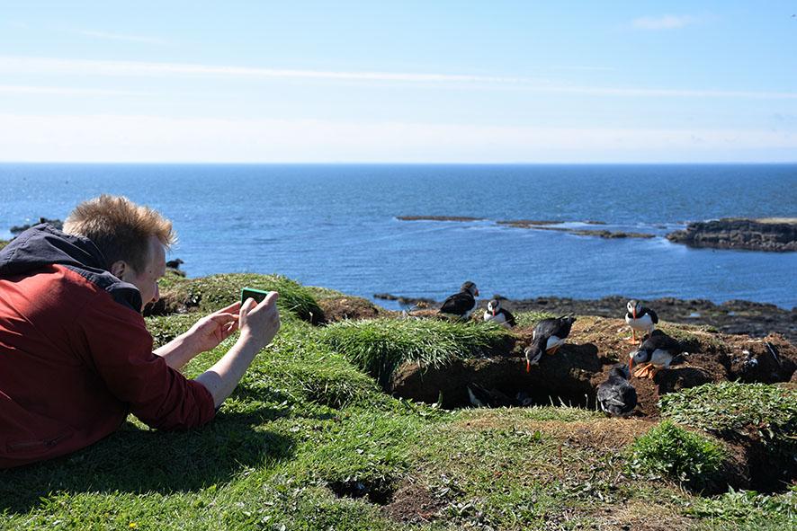 Bartek maakt een foto van puffins op Lunga