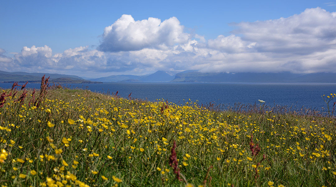 Schotland eilandhoppen naar Staffa en Lunga