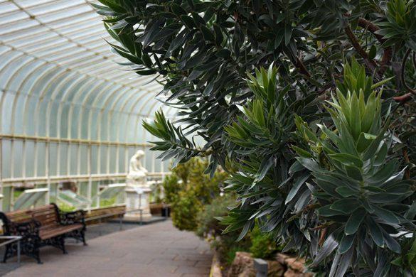 Botanische tuinen van Glasgow