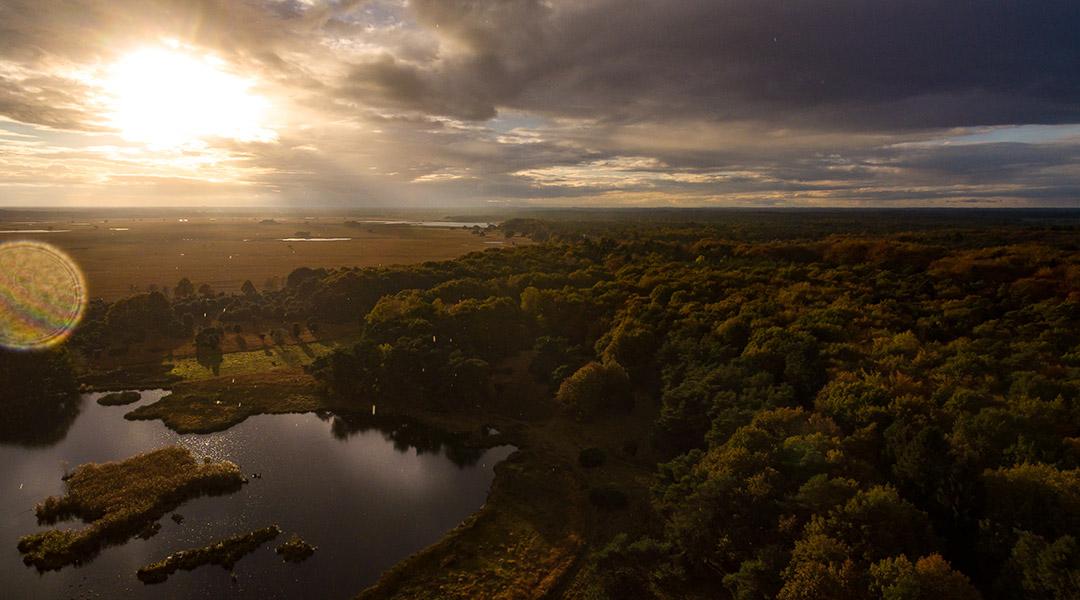 Dwingelderveld Nederland drone foto