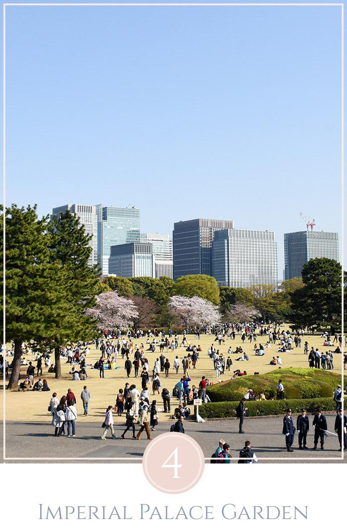 Overzicht over de oostelijke Imperial Palace Gardens in Tokyo met veel mensen, geel gras, en kersenbloesems in de achtergrond