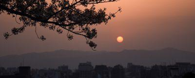 Zonsondergang boven Kyoto, de bergen en de stad vormen een silhouette, een tak van een kersenbloesem hangt als een schaduw over de stad